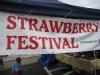 strawberry-festival-2009-franklin-ma1.jpg