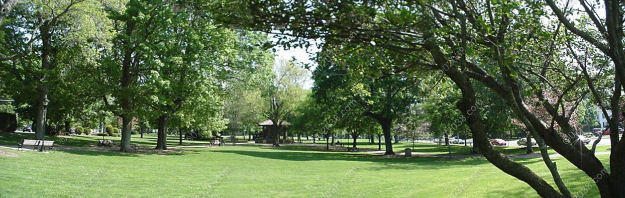 franklin-ma-town-common-view.jpg