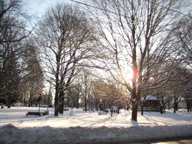 franklin-ma-town-common-winter-1.jpg