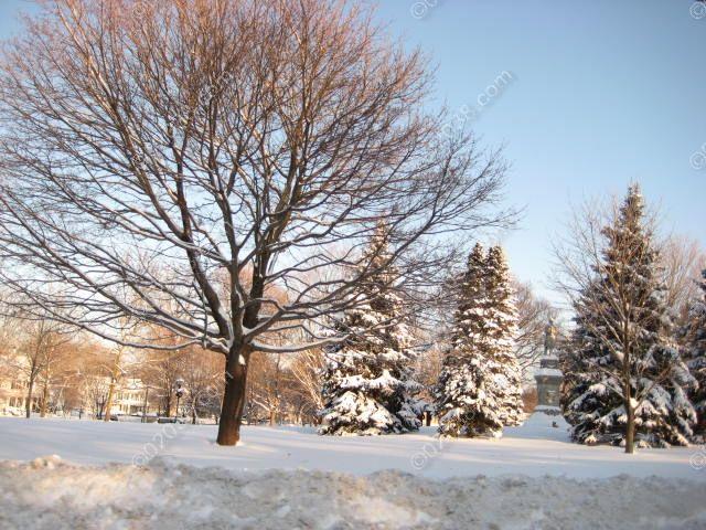 franklin-ma-town-common-winter-2.jpg