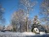franklin-ma-winter-10.jpg