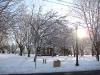 franklin-ma-winter-13.jpg