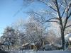 franklin-ma-winter-14.jpg