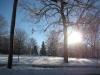 franklin-ma-winter-15.jpg
