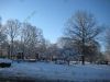 franklin-ma-winter-16.jpg