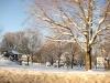 franklin-ma-winter-17.jpg