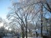 franklin-ma-winter-21.jpg