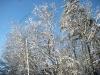 franklin-ma-winter-22.jpg