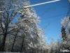 franklin-ma-winter-26.jpg