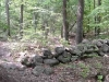 trail-passes-stone-walls_wm.jpg
