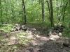 well-marked-trail_wm.jpg