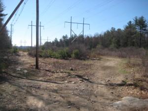 Franklin State Forst Franklin MA - power lines