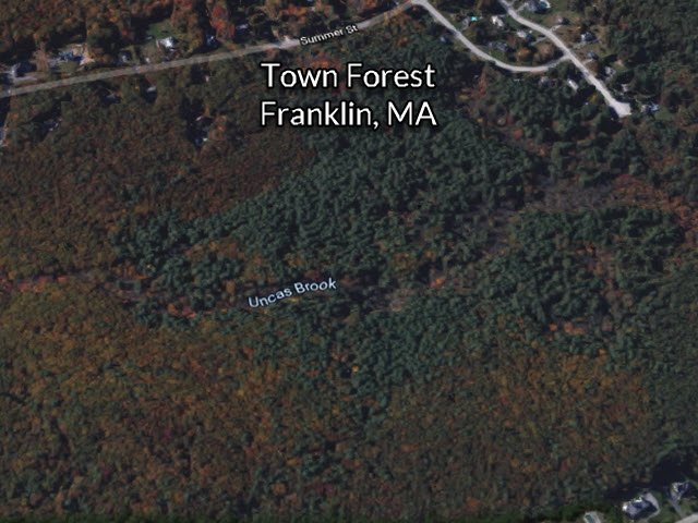 Franklin Town Forest Franklin MA