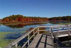Stony Brook Norfolk MA