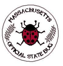 state bug