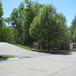 Chestnut Ridge Condos Franklin MA - mature trees