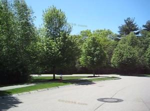 Chestnut Ridge Condos Franklin MA - mature trees
