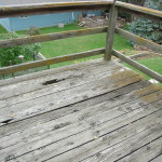 deck rot neglect