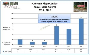 Chestnut Ridge Franklin MA condo sales 2015