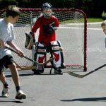 https://02038.com/wp-content/uploads/2017/05/Franklin-Recreation-Department-Street-Hockey.pdf