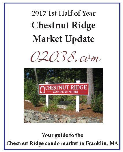 Chestnut Ridge Condos sales report 2017