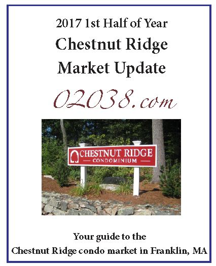 Chestnut Ridge Condos sales report 2017