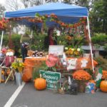 Harvest Hestival Franklin MA
