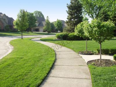 learn-more-franklin-ma-neighborhoods
