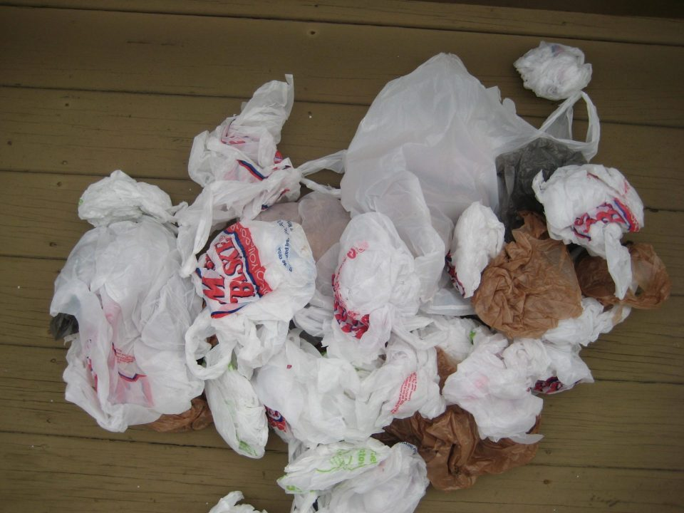 franklin ma bans plastic carry-out bags